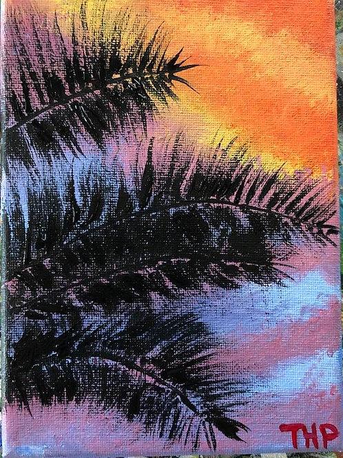230 Sunset Palms 5 x 7s