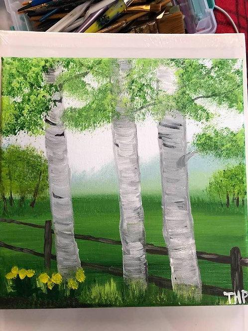 205 Birch Trees 10x10s