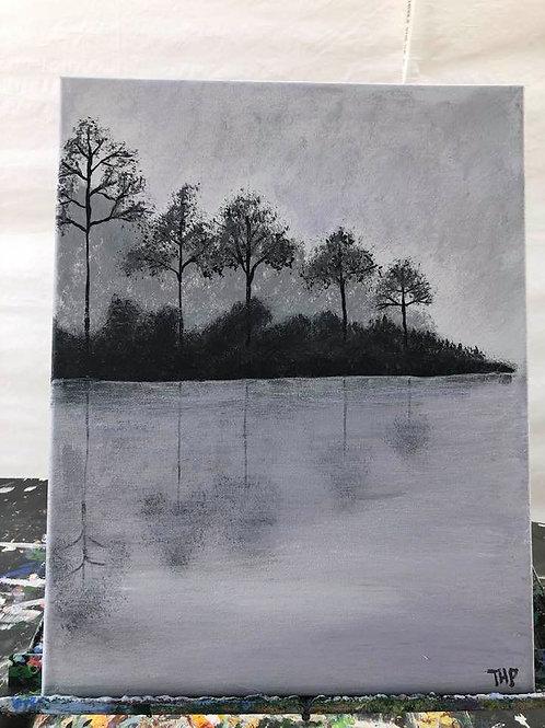 259 Misty Reflections 11x14s
