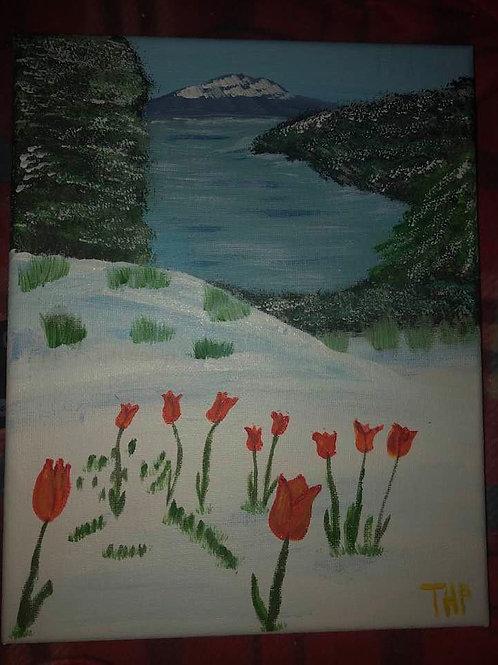 123 Tulips Thru Snow 8 x 10s