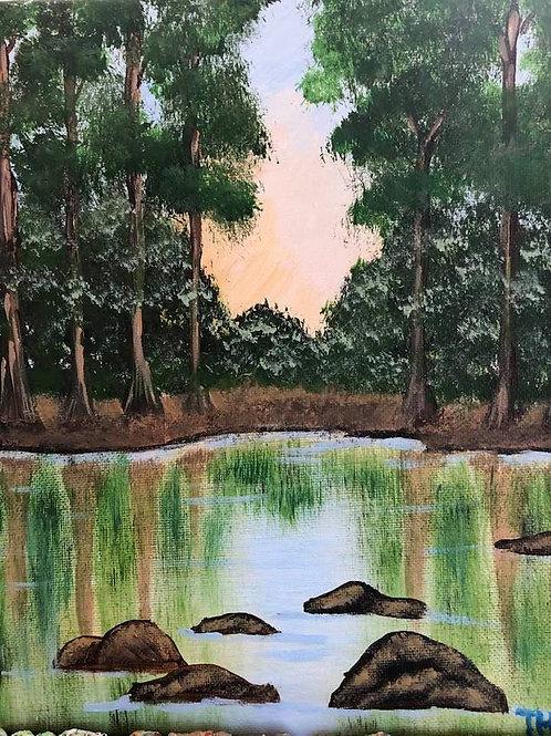 156 Hidden Pond 8 x 10s