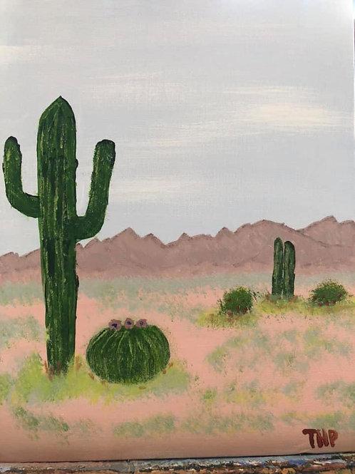 78 Desert 8 x 10