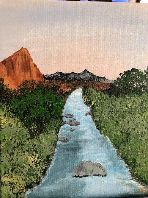 65 Virgin River Through Zion 8x10s