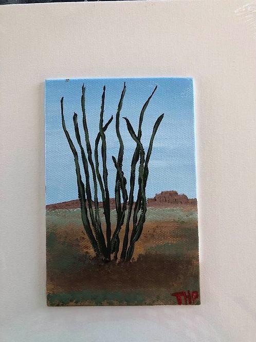 105 Cactus 4 x 6