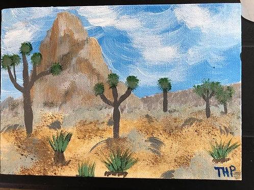 219 Desert Rocks 5 x 7