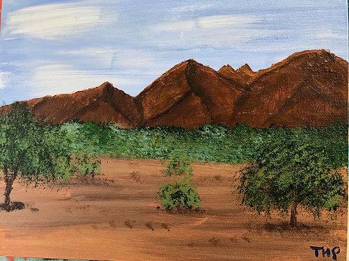 74 Quartzsite Desert 8 x 10