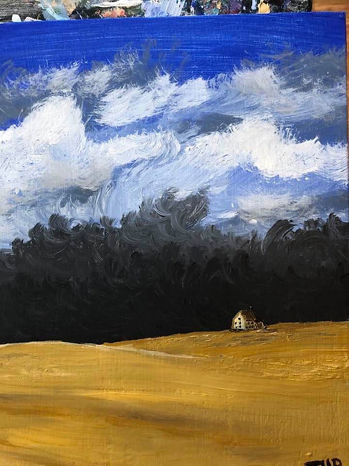 195 Storm Coming 8x10