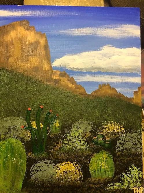 147 Cactus Garden 11 x 14