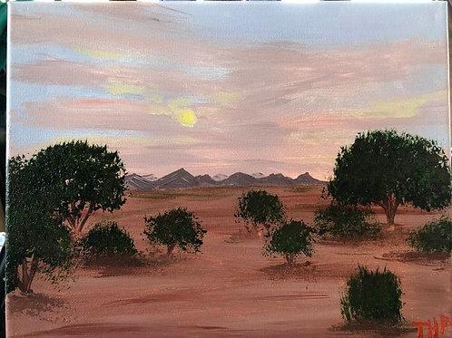 80 Desert 8 x 10s