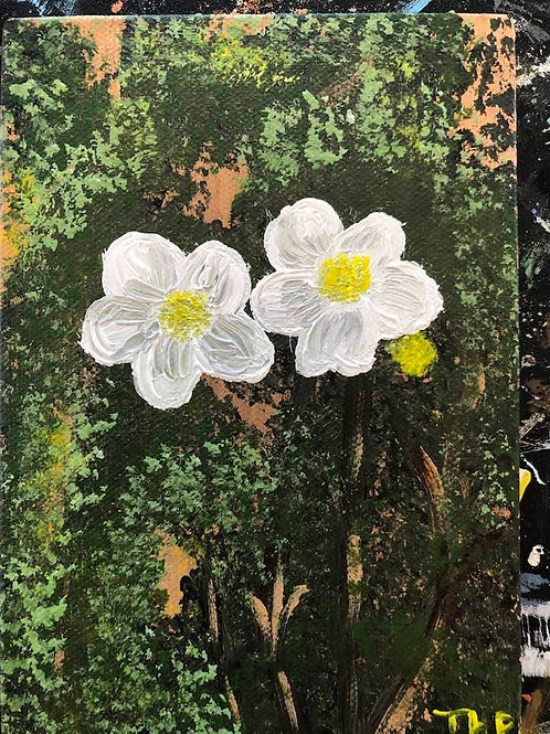 113 Flowers at Grand Canyon 5 x 7