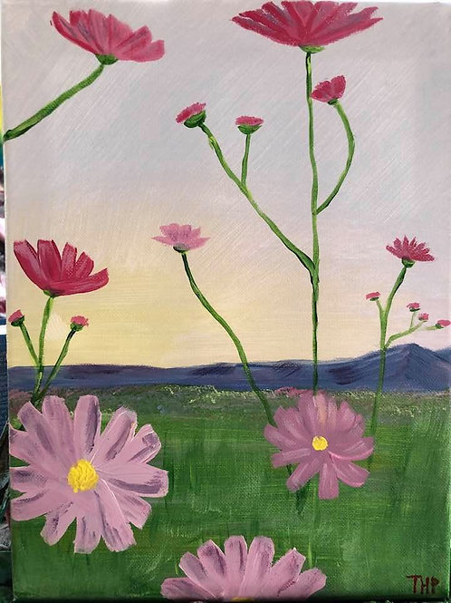215 Pink Asters 9x12s