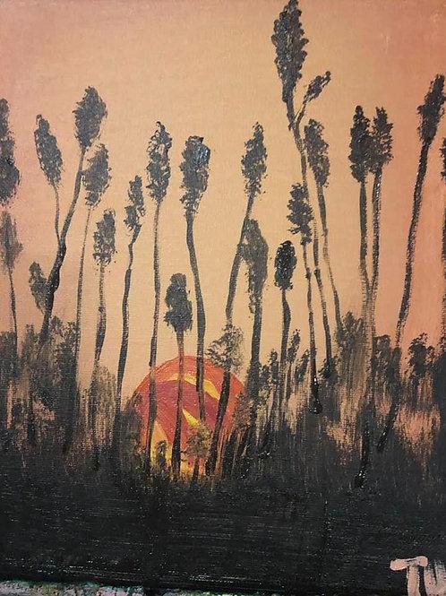 226 Sun behind wheat 8x10s