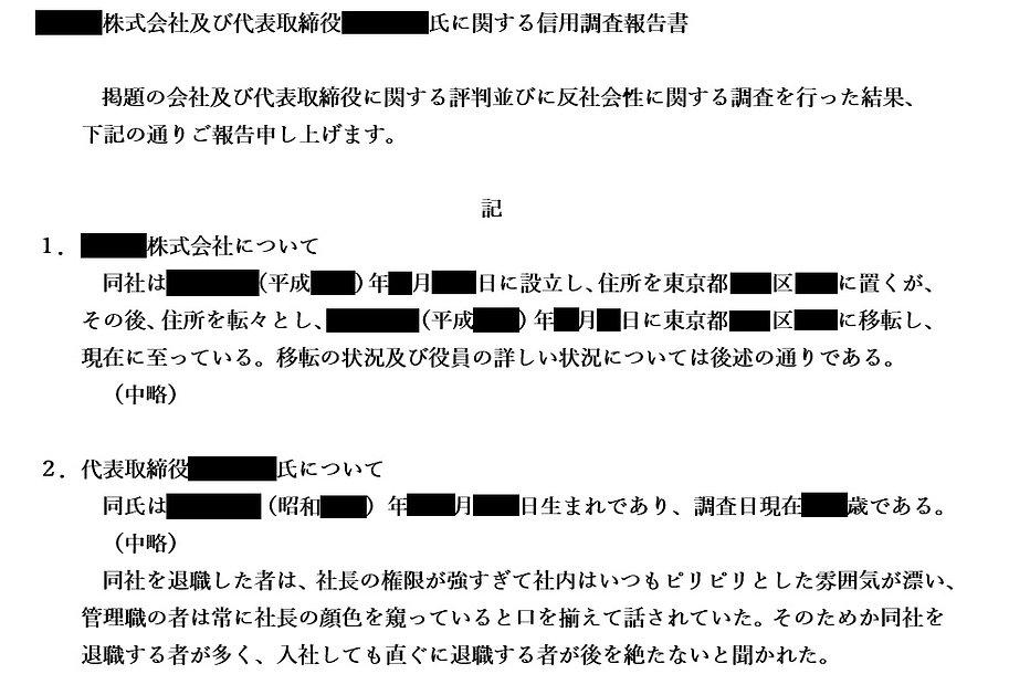 報告書例(会社信用調査)