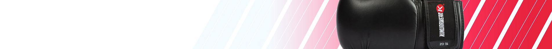Genesis-Banner.jpg