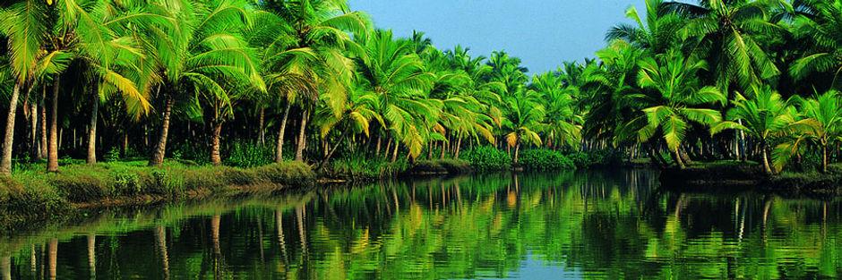 Kerala_Beauty.jpg