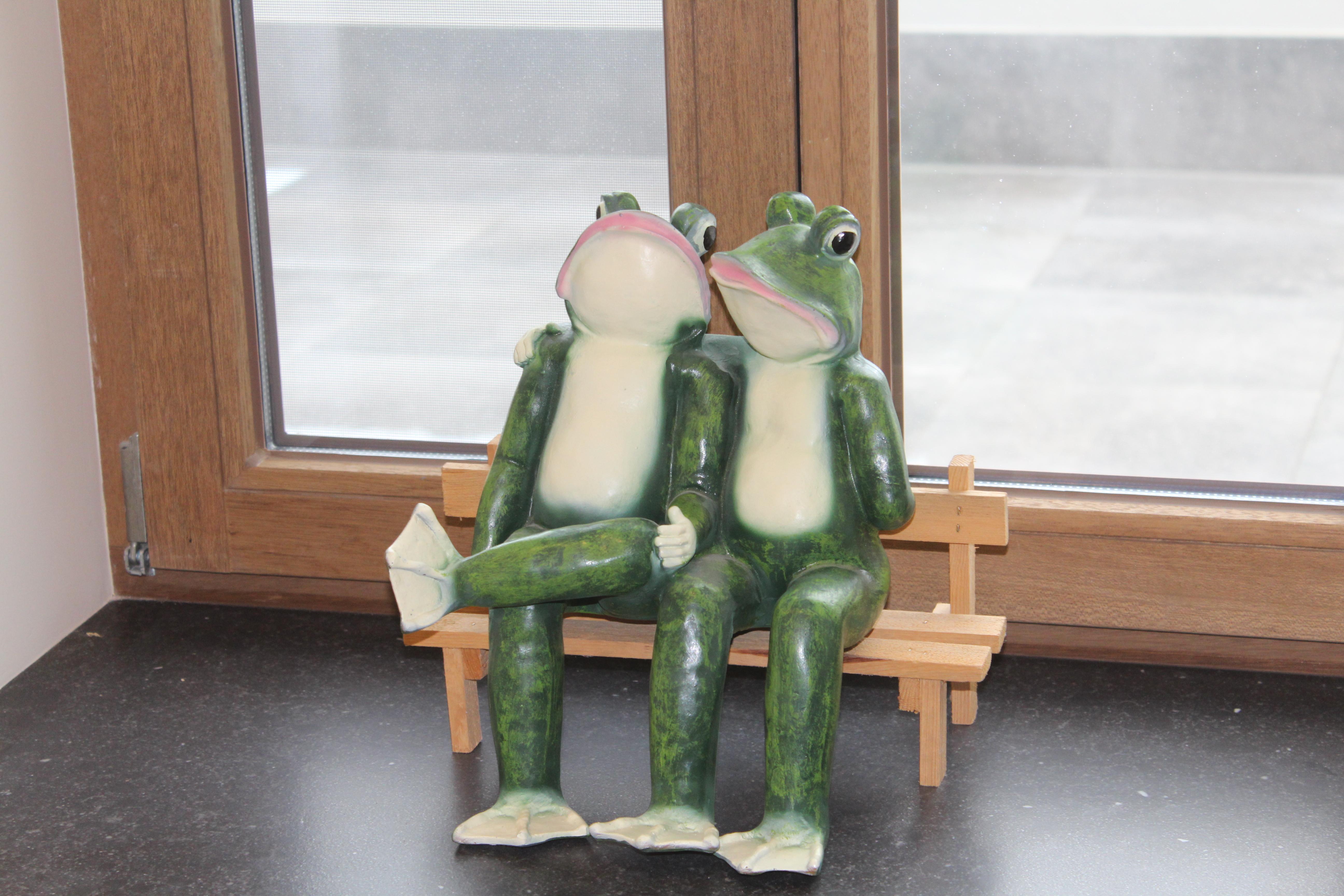 "in ""la maison grenouille"""