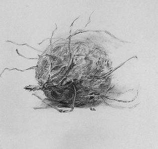 Malkurs Fur Kinder Und Jugendliche Luzern Inhalte Zeichnen