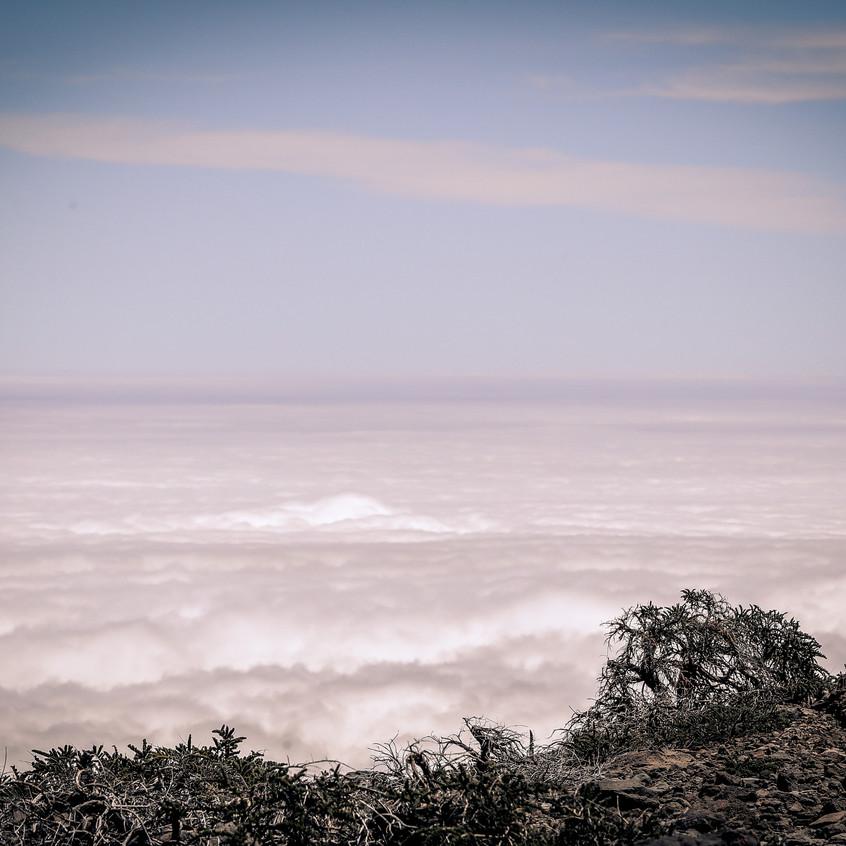 ©cyrille-quintard-transvulcania-1734