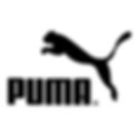 EMME Visioncare x Puma Logo.png