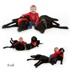 hund 3.jpg