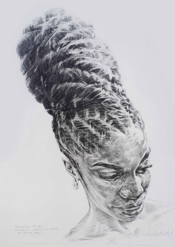 STUDY  -  CROWNING GLORY COWRIE   Graphite pencil on cartridge paper  48 x 37 cm