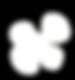 White Logo Top Pattern.png