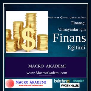 Finansci olamayanlar icin finans - Made
