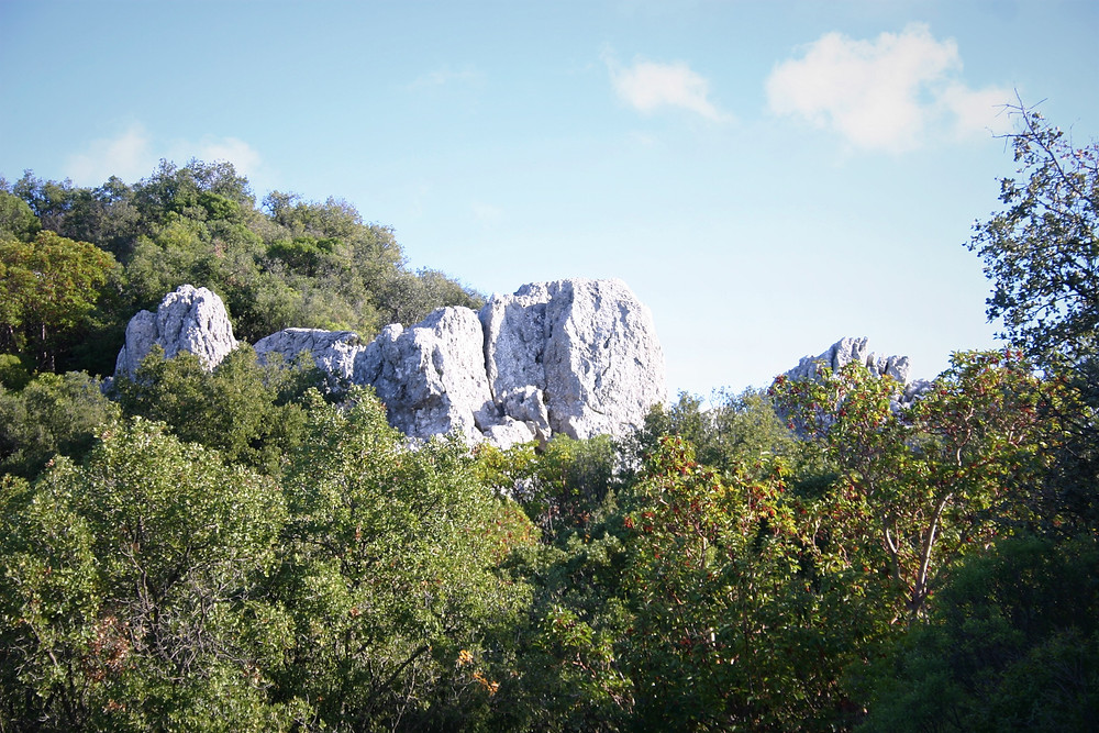 Limestone and Strawberry trees on the Lycian Way in November