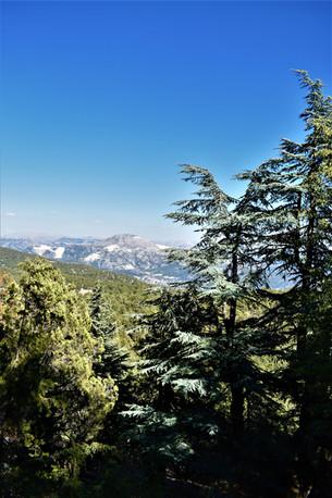 View towards Serpil village