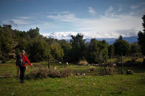 Mt. Akdag from the Lycian Way near Sidyma