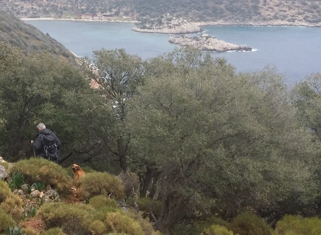 Another day in the office ( Walking along the Lycian way)