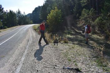 Start of the Trek at roadside