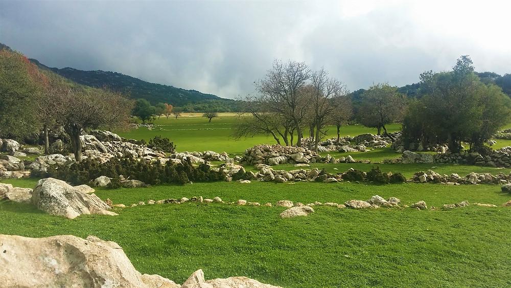 Lycian Meadow in winter trekket to by Amber Travel Turkey