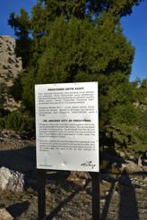 Information about Prostanna