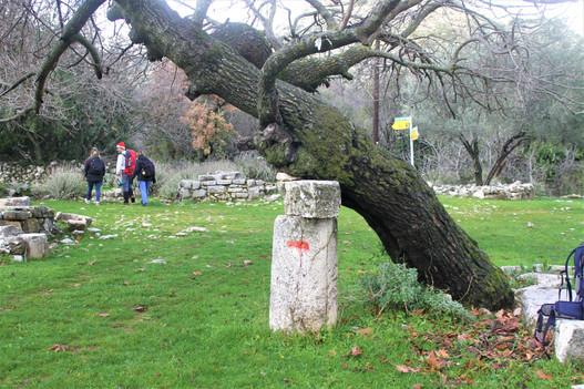 Column at Sidyma with Lycian Way mark