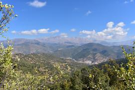 General view of Kasimlar