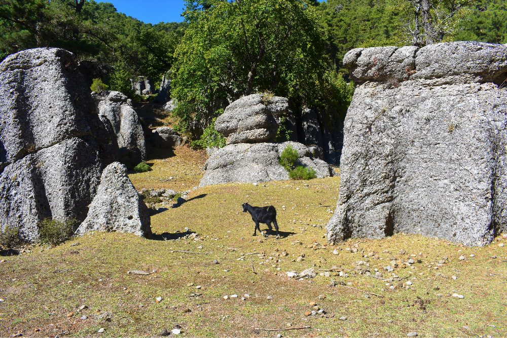 Rock Formation on the camino