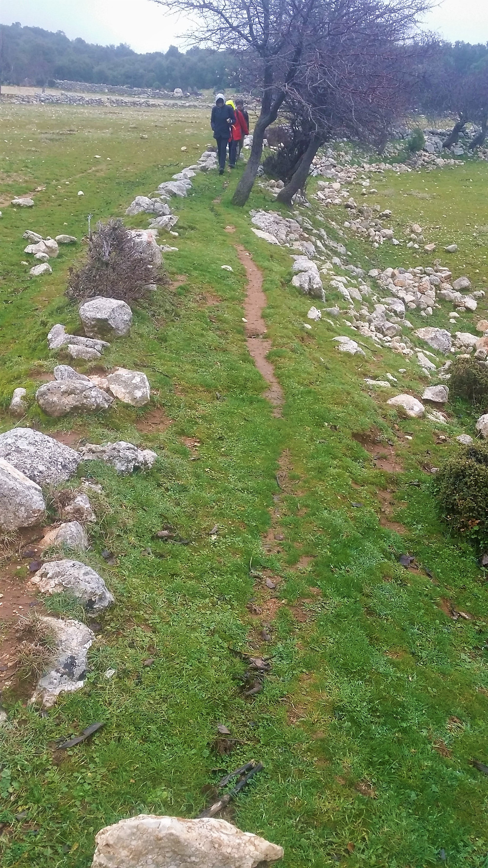 A section of the Lycian Way