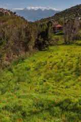 Mt Akdağ (3000m) taken from near Sidyma