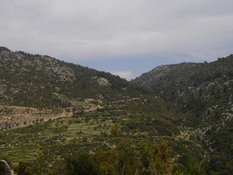 The route to Sidyma up this road