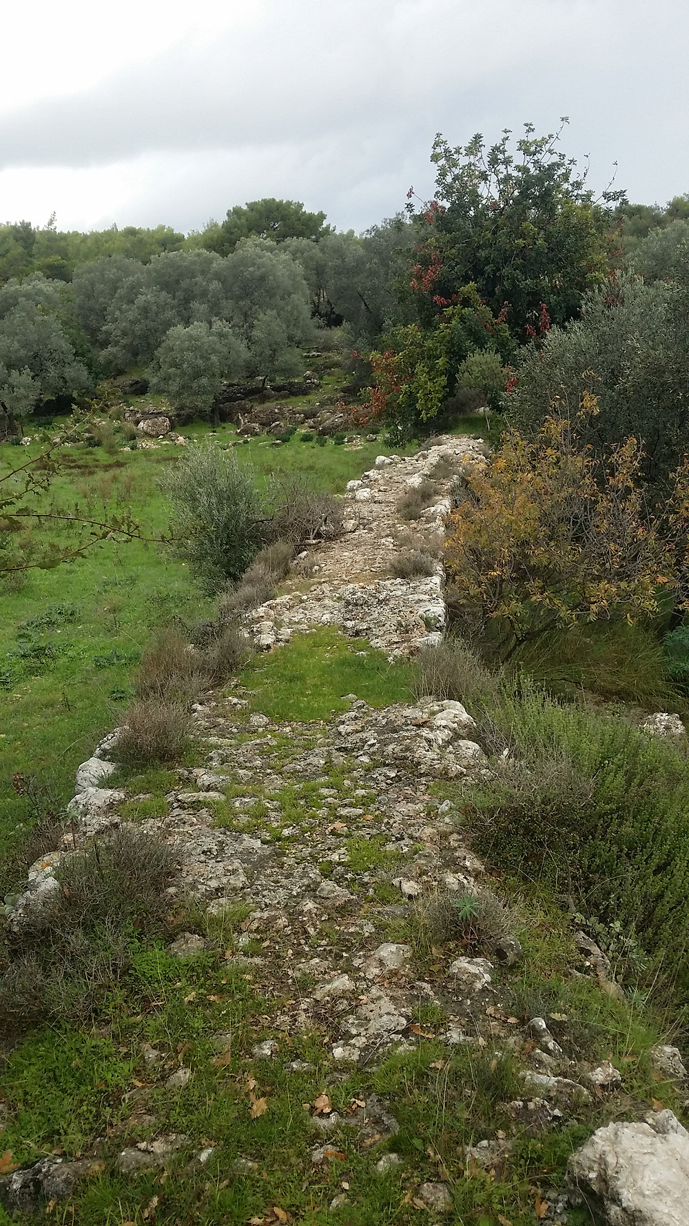 The other Patara aqueduct that is not followed by the Lycian way