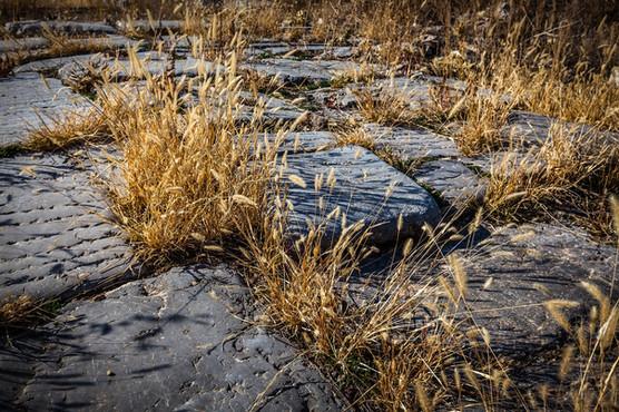 Pavingstones walked by St Paul -  Antioch ad Pisidiam - Thanks to Curt Bidinger