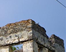Roller on abandoned building