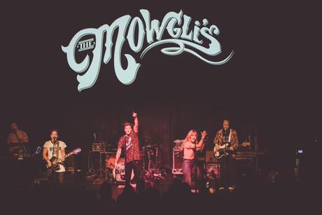 MOWGLIS-2.jpg
