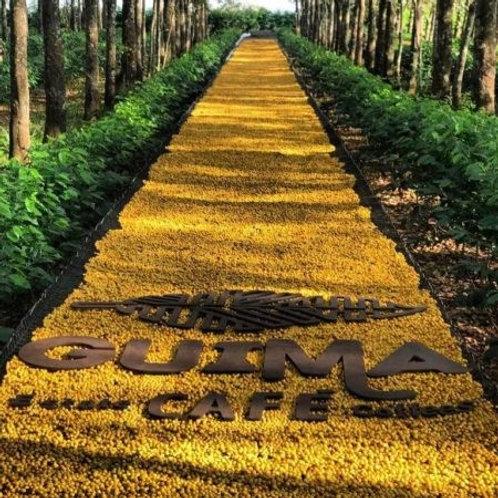 【Brazil organic】ギーマ農園 イエローブルボン ナチュラル