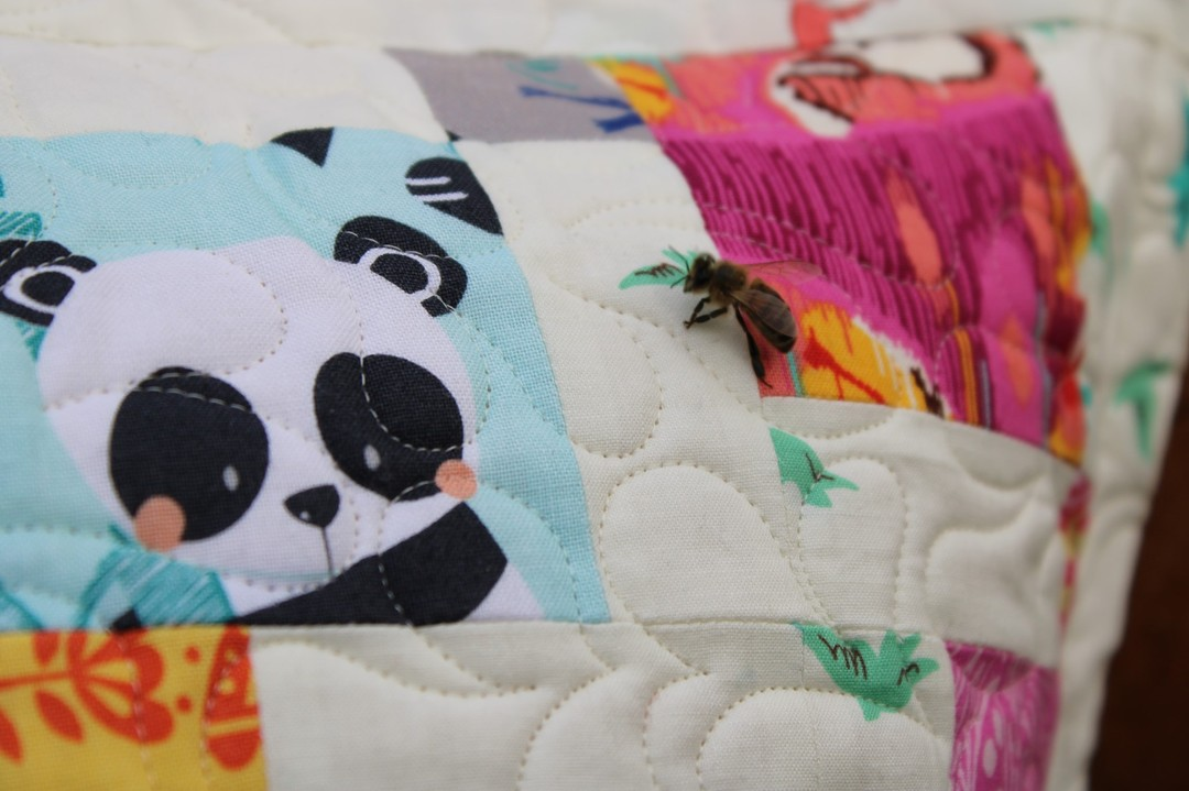 Bee on my mini 9 patch cushion