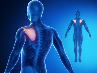 Injury blog: Winging of the shoulder blades