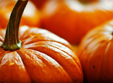 Many Reasons to Eat Pumpkin!