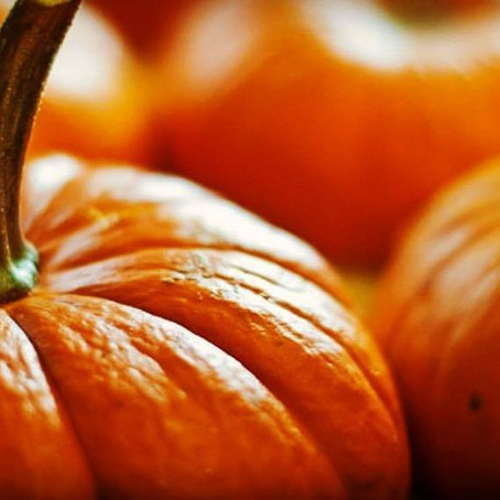 Many Reasons to Eat Pumpkin!
