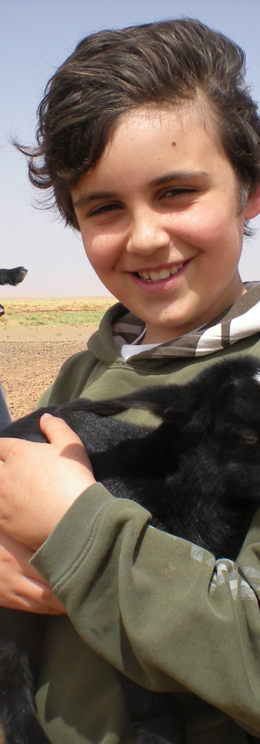 Berber Goats